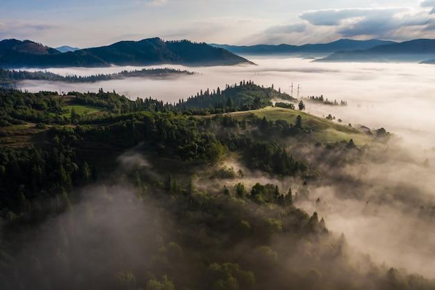 Вид с воздуха на красочный смешанный лес, окутанный утренним туманом в прекрасный осенний день