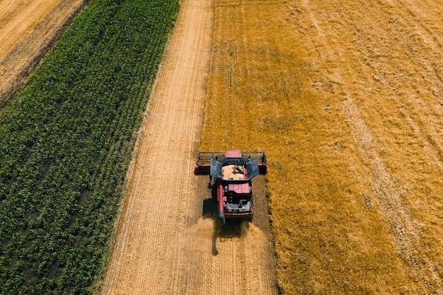 황금 익은 밀밭을 수확하는 결합 수확기 농업 기계의 공중보기는 ...