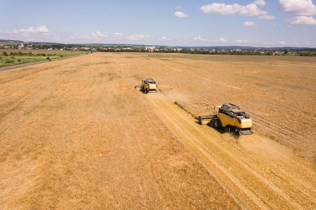 Вид с воздуха на комбайны, собирающие большое желтое поле спелой пшеницы.