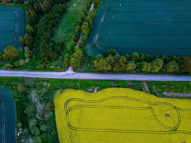 小麦畑の間の田舎道の空撮