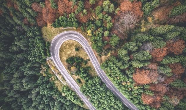 森に囲まれた巻き毛の道路の航空写真