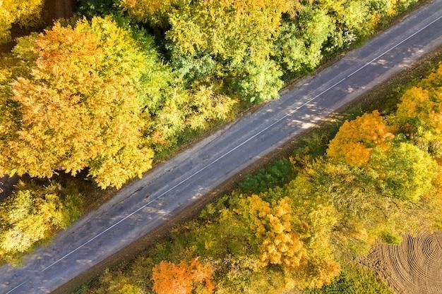 Вид с воздуха на пустую дорогу между желтыми деревьями.