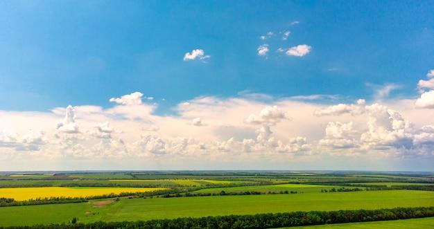 끝없는 무성한 목초지 농지의 공중보기 아름다운 시골 에메랄드 녹색 노란색 필드