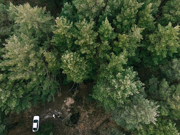 常緑樹林と白い車の空撮。自然の中でのキャンプ。