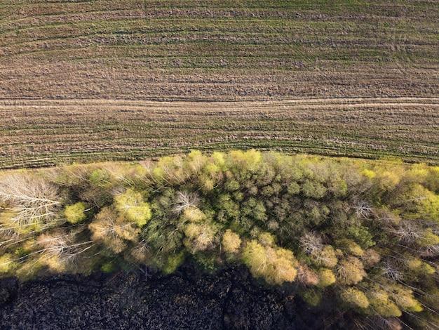 Вид с воздуха на поле, лес и заросший берег реки