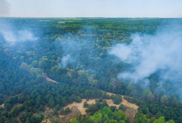Вид с воздуха на лесной пожар весной пожар в деревьях сухой траве в лесу.