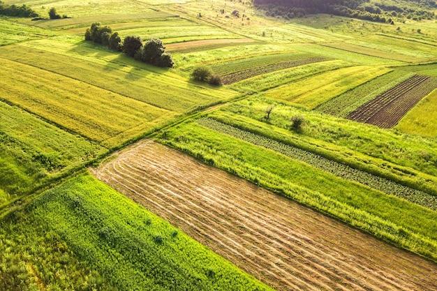 Вид с воздуха на зеленые сельскохозяйственные поля весной со свежей растительностью после посевного сезона в теплый солнечный день.