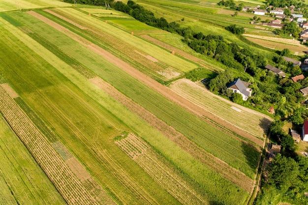 Вид с воздуха на зеленые сельскохозяйственные поля весной со свежей растительностью после посевного сезона