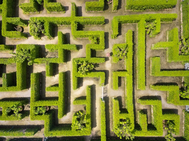 Вид с воздуха на зеленый сад лабиринт