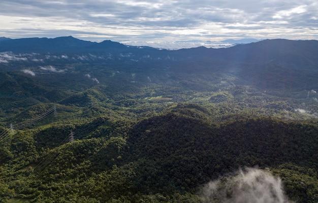 Аэрофотоснимок столба высокого напряжения или башни высокого напряжения в лесу