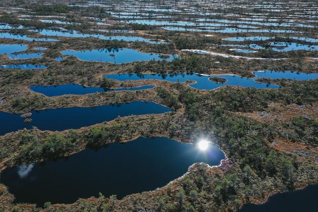 植生のある湖エリアの空撮