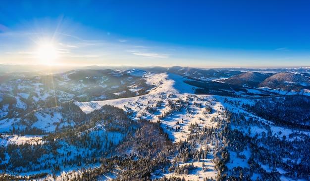 Вид с воздуха на завораживающий живописный пейзаж стройных высоких елей, растущих на заснеженных холмах в солнечную зиму и ясный день на фоне голубого неба. место для рекламы