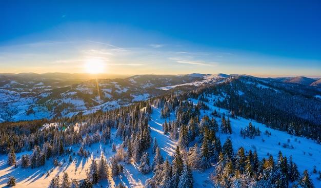 晴れた冬と青空を背景に晴れた日に雪の丘に生えている細長いモミの木の魅惑的な絵のような風景の空撮。