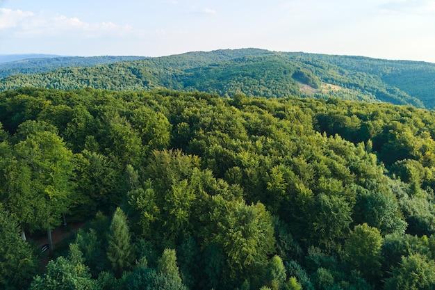 明るい夏の日に密な緑豊かな森に覆われた山の丘の空撮。 Premium写真