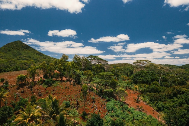 モーリシャス島の山と野原の空撮。