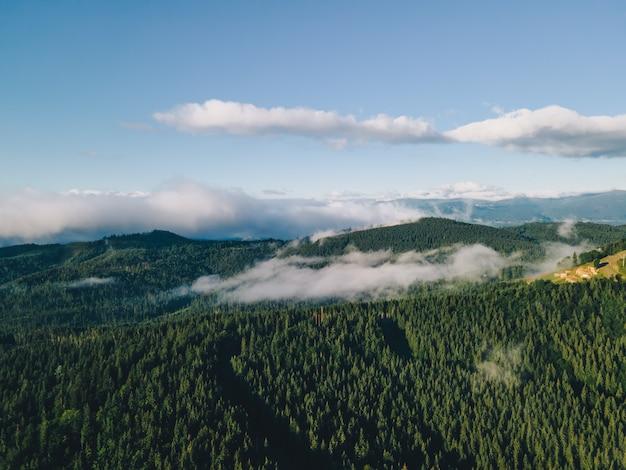 여름 위에서 산의 공중 전망입니다. 카르파티아 산맥