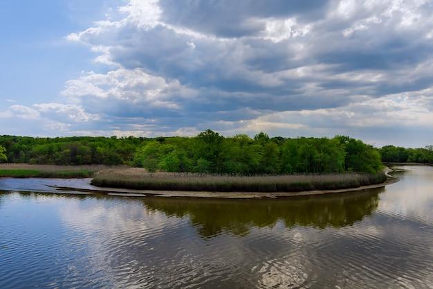 Аэрофотоснимок естественного пруда в солнечный летний день, панорама леса на естественном дневном свете неба