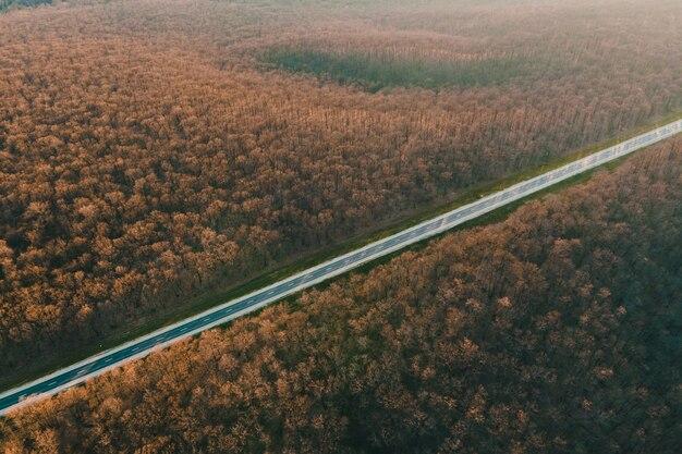 山のまっすぐな高速道路上空を飛んで日没の映画のようなドローンショットで葉のない森のアスファルト道路の空撮