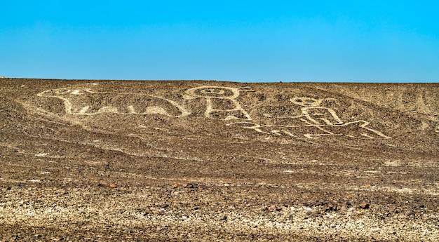 Palpa geoglyphs의 공중 보기입니다. 페루의 유네스코 세계 유산