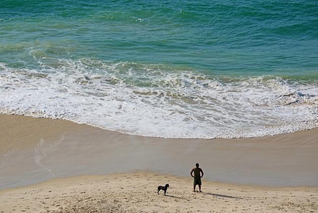Вид с воздуха на людей с собакой, отдыхающих на песчаном пляже в утреннем солнечном свете