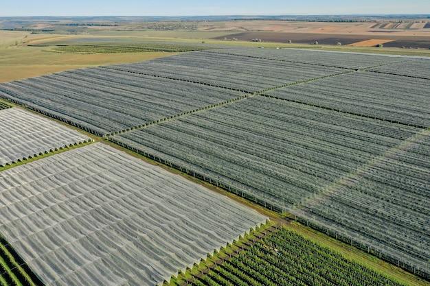 リンゴ園のプラスチック温室の空撮。有機農業における植物栽培。