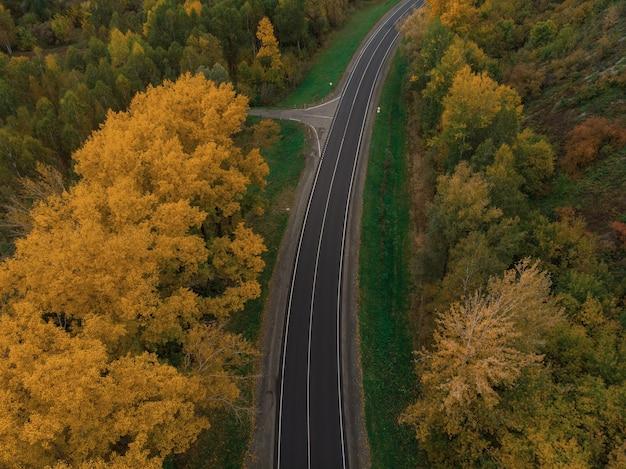 美しい秋のアルタイの森の道路の航空写真