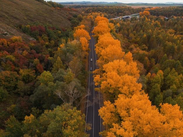 아름다운 가을 숲 도로의 항공보기
