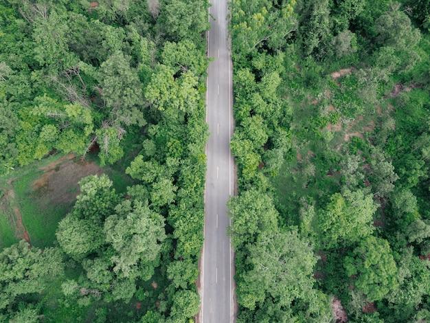 Вид с воздуха на дорогу в зеленом лесу. удивительный пейзаж с сельской дорогой