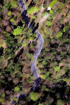 푸른 나무 중간 도로의 항공보기
