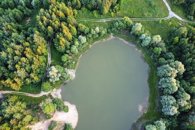 Вид с воздуха на летние зеленые деревья в лесу с озером