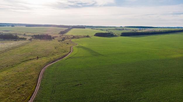 Вид с воздуха на летний пейзаж зеленого сельскохозяйственного поля с грунтовой дорогой и лесной полосой на закате, снятый с вертолета, как с высоты птичьего полета