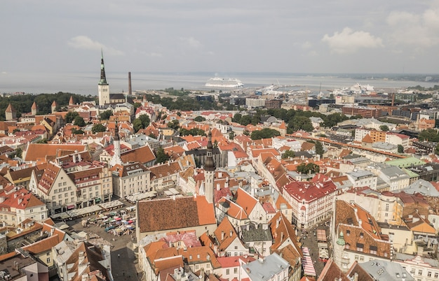 에스토니아의 수도 탈린의 조감도