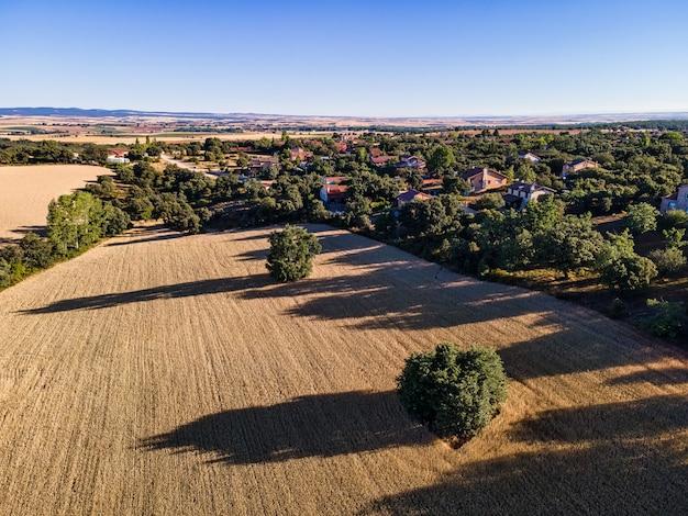 木々の間に家があるカスティーリャの田園地帯の空撮。セゴビア。