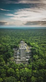 Вид с воздуха на пирамиду, калакмуль, кампече, мексика. руины древнего города майя калакмул в окружении джунглей