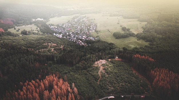 鬱蒼とした森の中の田舎の家々の空撮