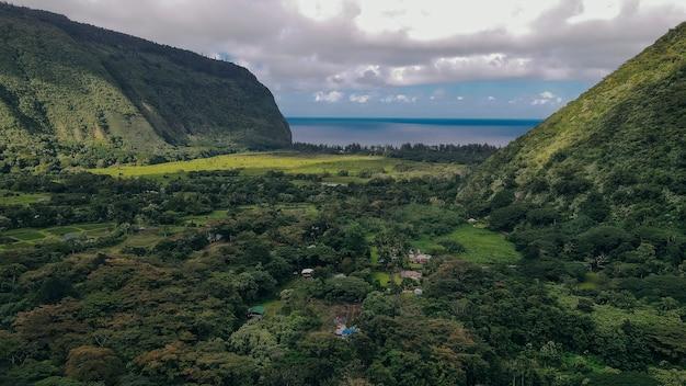 안개와 구름으로 뒤덮인 아름다운 폭포가 있는 하와이 빅 아일랜드(big island of hawaii)의 와이피오 계곡(waipio valley)의 공중 전망.