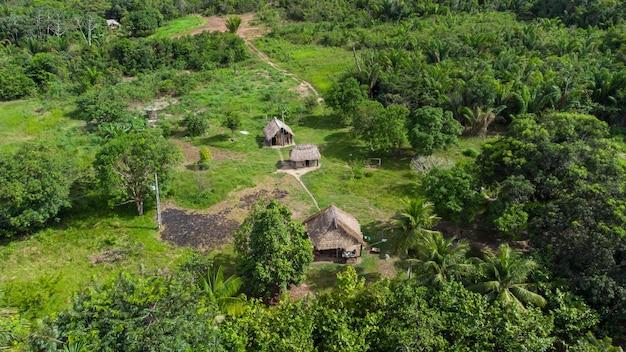 Вид с воздуха на типичную коренную котловину. очень часто встречается в лесах амазонки. полая конструкция состоит из веток бамбука и стволов деревьев. крышка изготавливается из соломы или пальмовых листьев.
