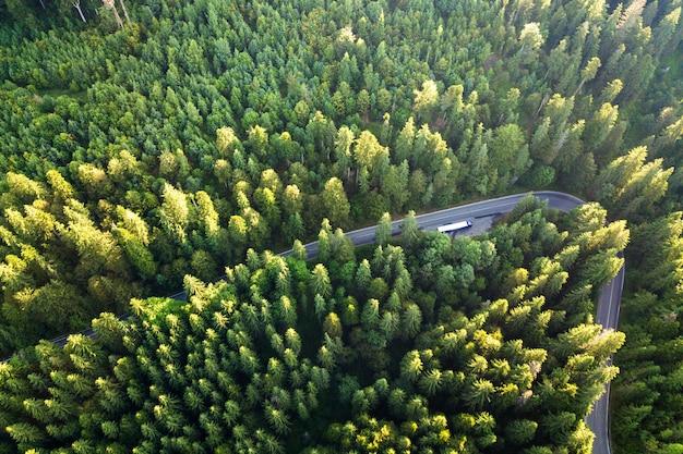 高い山の曲がりくねった道の空撮はトラフ密な緑の松林を渡します。