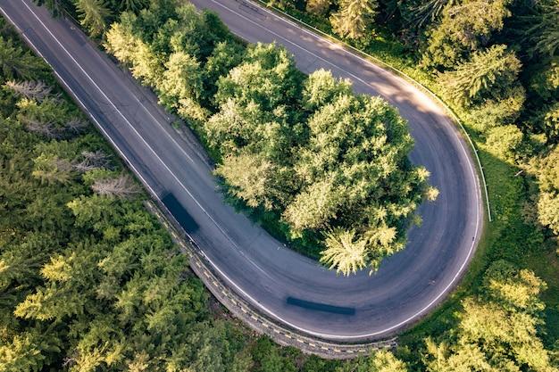 高い山の曲がりくねった道の空撮は、密な緑の松林を通過します。