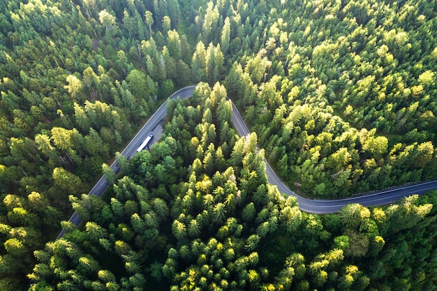高山の曲がりくねった道の空撮は、密な緑の松林を通過します。