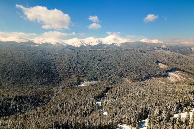 Вид с воздуха на зимний пейзаж с горными холмами, покрытыми вечнозеленым сосновым лесом после сильного снегопада в холодный яркий день.
