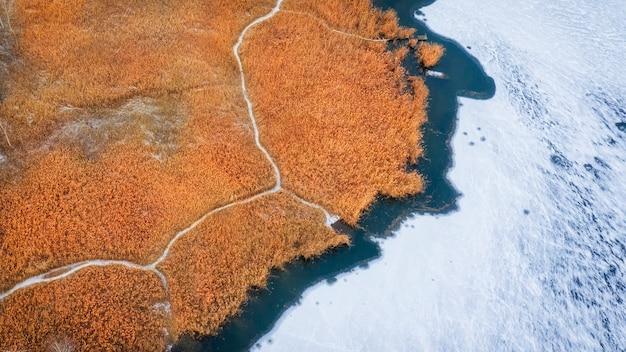 凍った湖の岸に黄色いreの空撮、明るく豊かな色の秋や冬の風景、ドローンからの眺め。