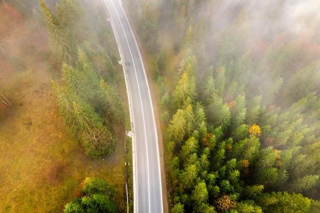 夏の山々の常緑樹林と緑の松の木の間の曲がりくねった道の空中写真。