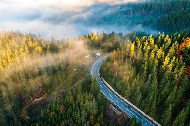 夏の山々の常緑樹林と緑の松の木の間の曲がりくねった道の空撮。
