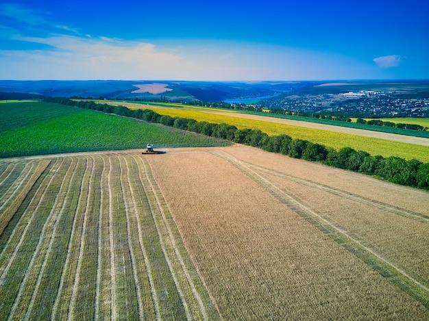 Вид с воздуха на зерноуборочный комбайн собирает пшеницу на закате. уборка зерновых полей, сезон урожая. посмотреть на комбайн на частично убранном поле. лето, молдова, европа.