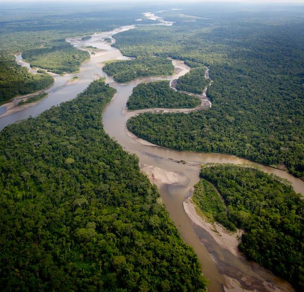 Вид с воздуха на тропический лес амазонки