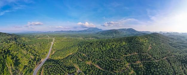空撮パノラマ自然山の風景