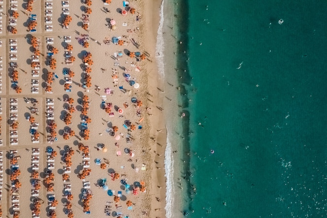 Aerial view of people resting on the beach near the sea