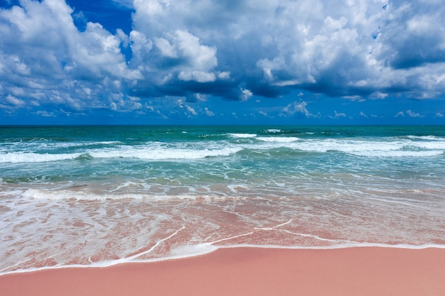 Aerial view of pink beach and blue ocean wave.