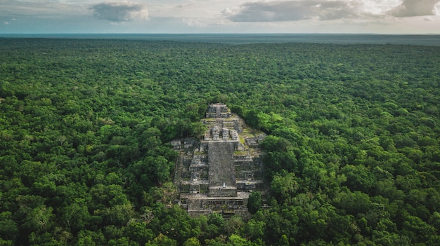 Aerial view of the pyramid, calakmul, campeche, mexico. ruins of the ancient mayan city of calakmul surrounded by the jungle